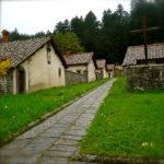 Visita guidata / trekking al Monastero ed Eremo di Camaldoli